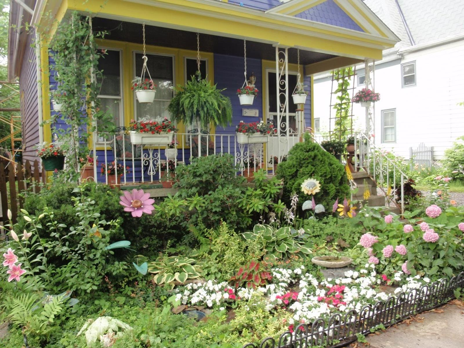 Best Plants for a Cottage Garden and Design Ideas 2