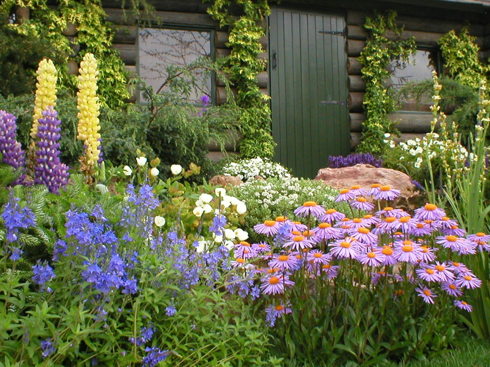 Best Plants for a Cottage Garden and Design Ideas 20