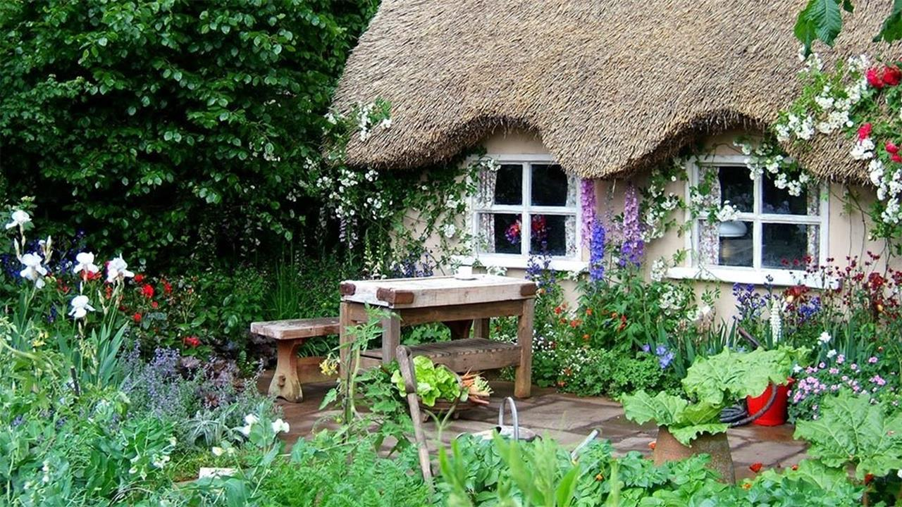 Best Plants for a Cottage Garden and Design Ideas 24