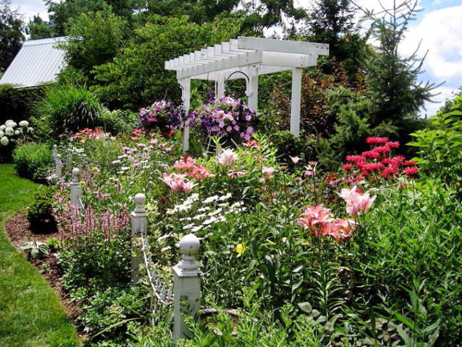 Best Plants for a Cottage Garden and Design Ideas 35