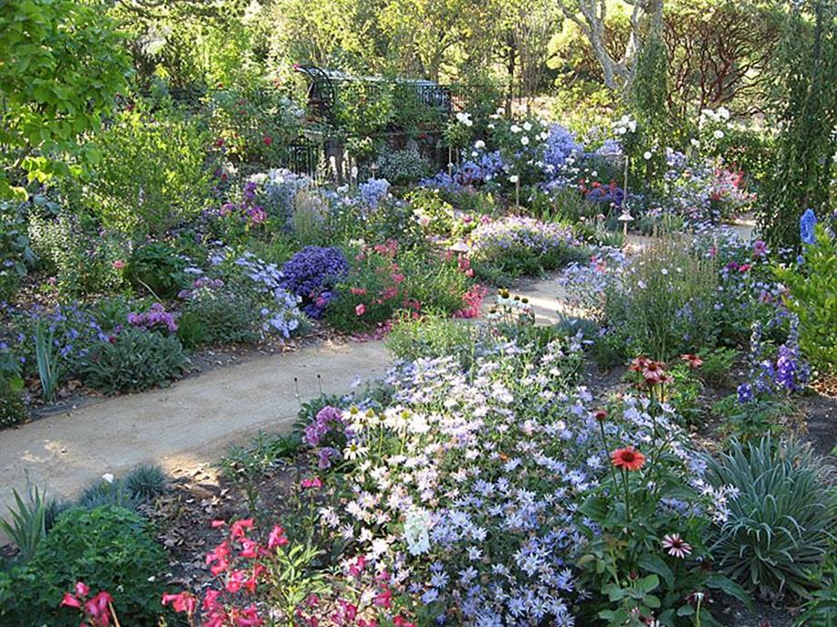 Best Plants for a Cottage Garden and Design Ideas 4