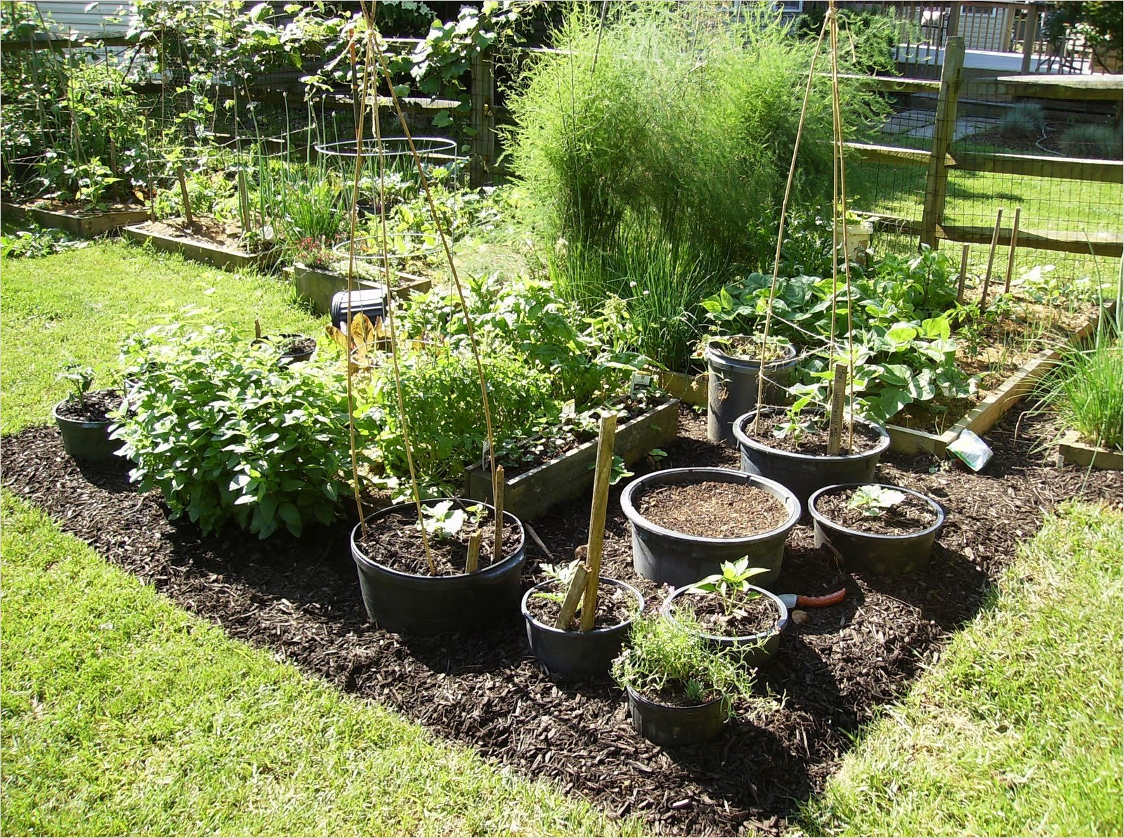 Vegetable Garden Designs 42 38 Homes that Turned their Front Lawns Into Beautiful Ve Able Gardens 7
