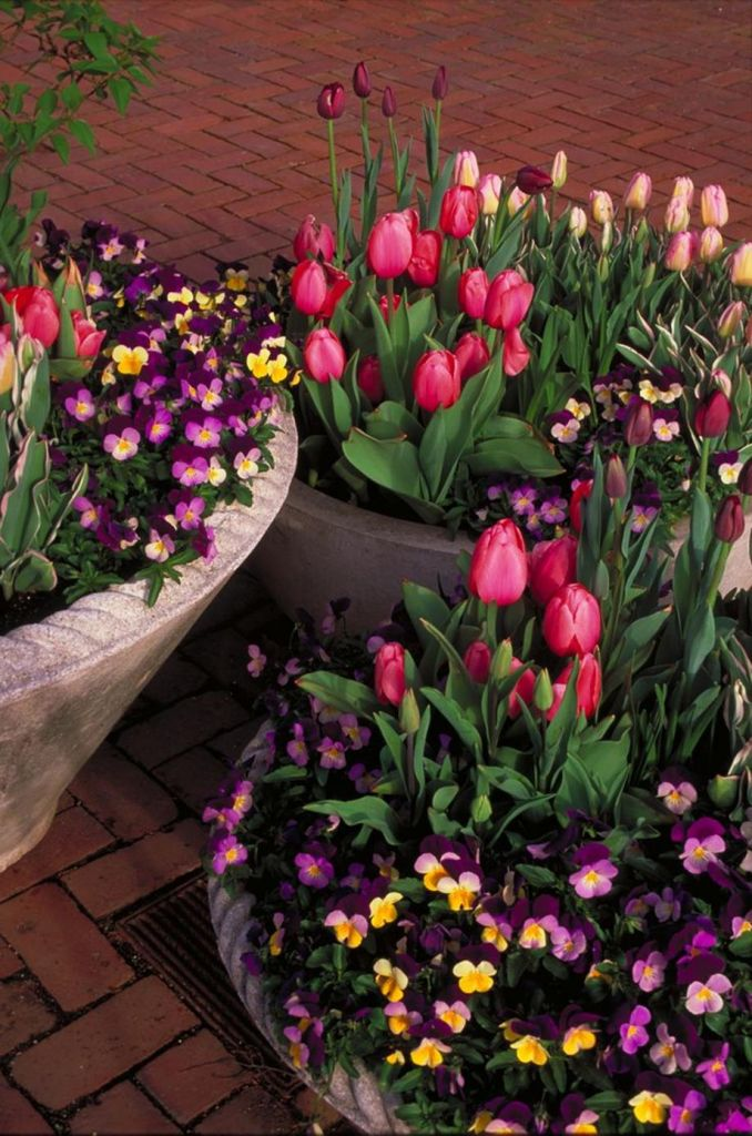Outdoor Spring Decor 30