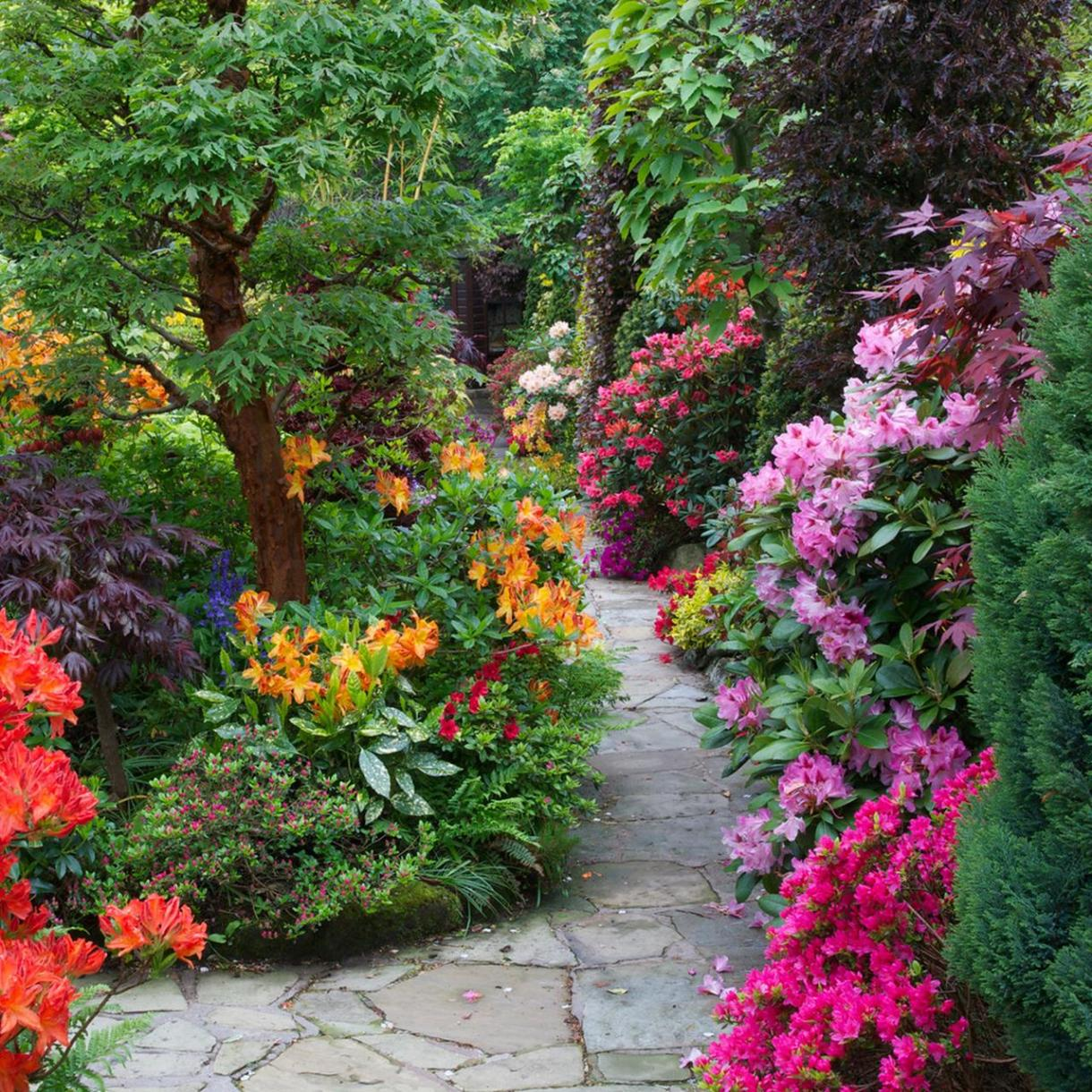 Beautiful Stone Path around Flowers 22