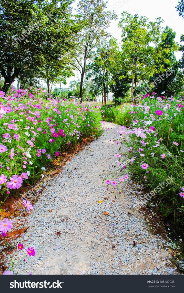 Beautiful Stone Path around Flowers 45