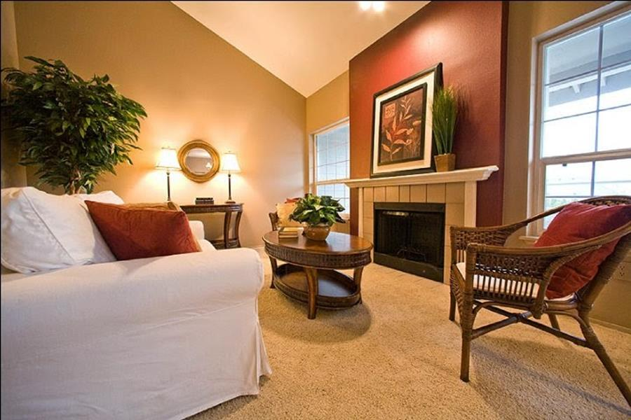 Living Room Accent Wall Color Combinations 23