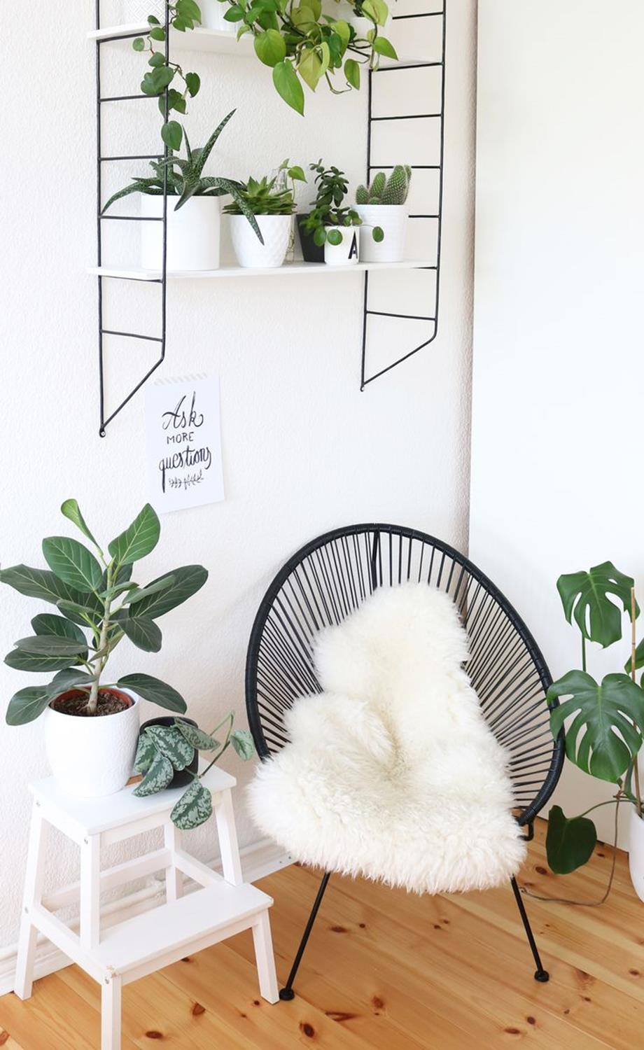 Urban Jungle Room Decor 16