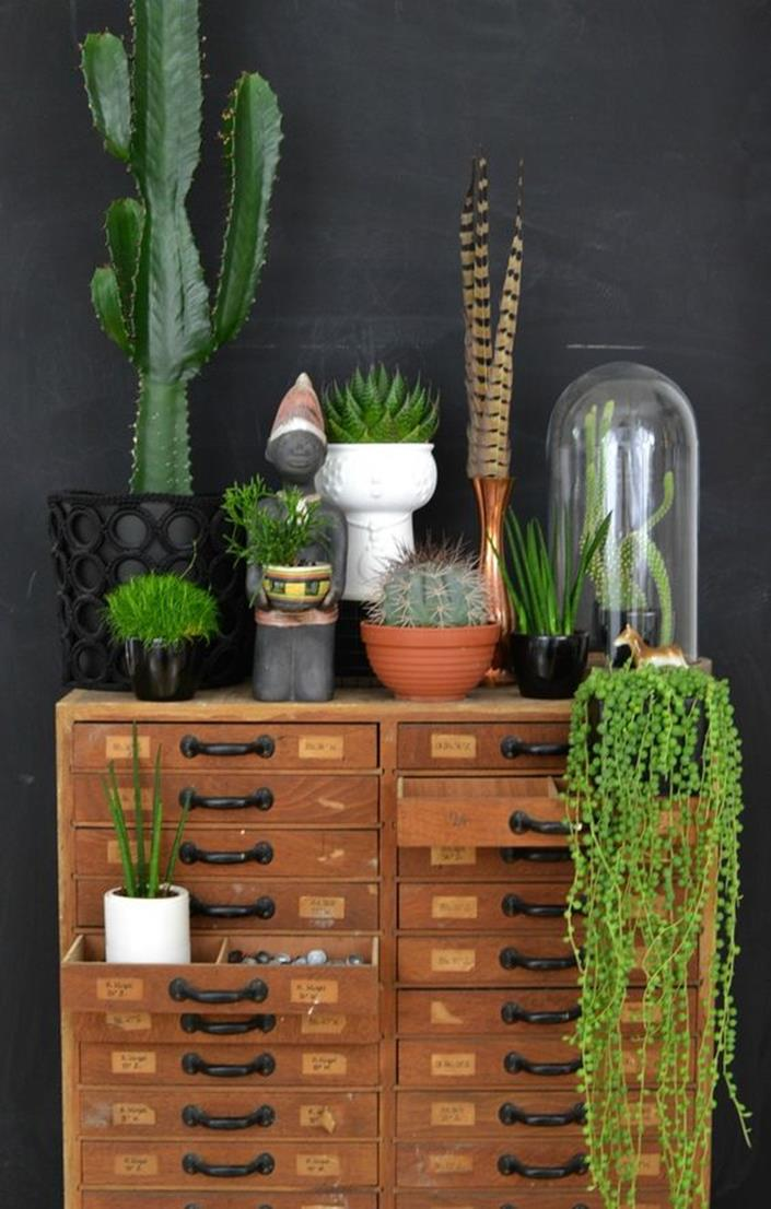 Urban Jungle Room Decor 22