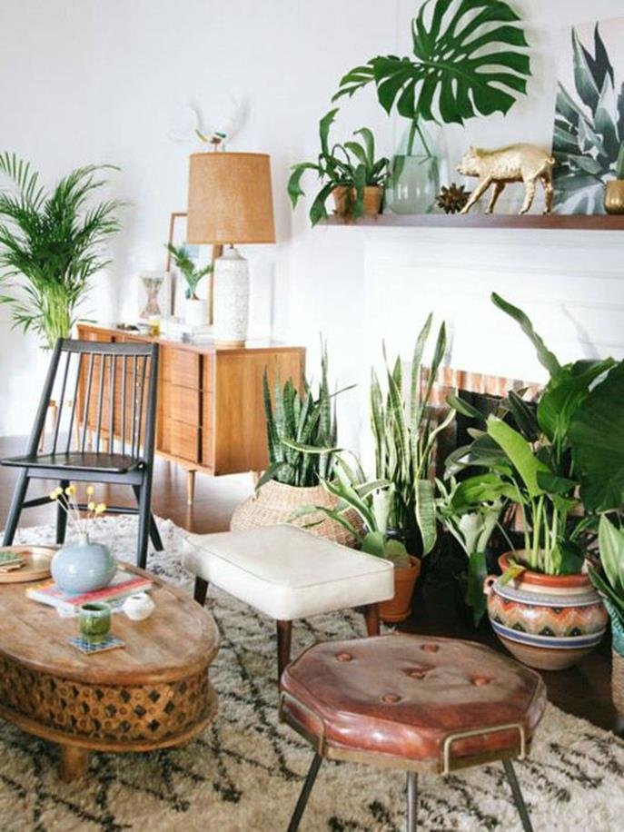 Urban Jungle Room Decor 27