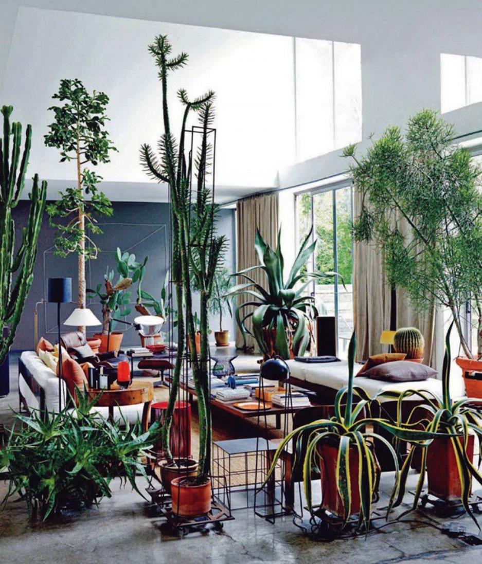 Urban Jungle Room Decor 29