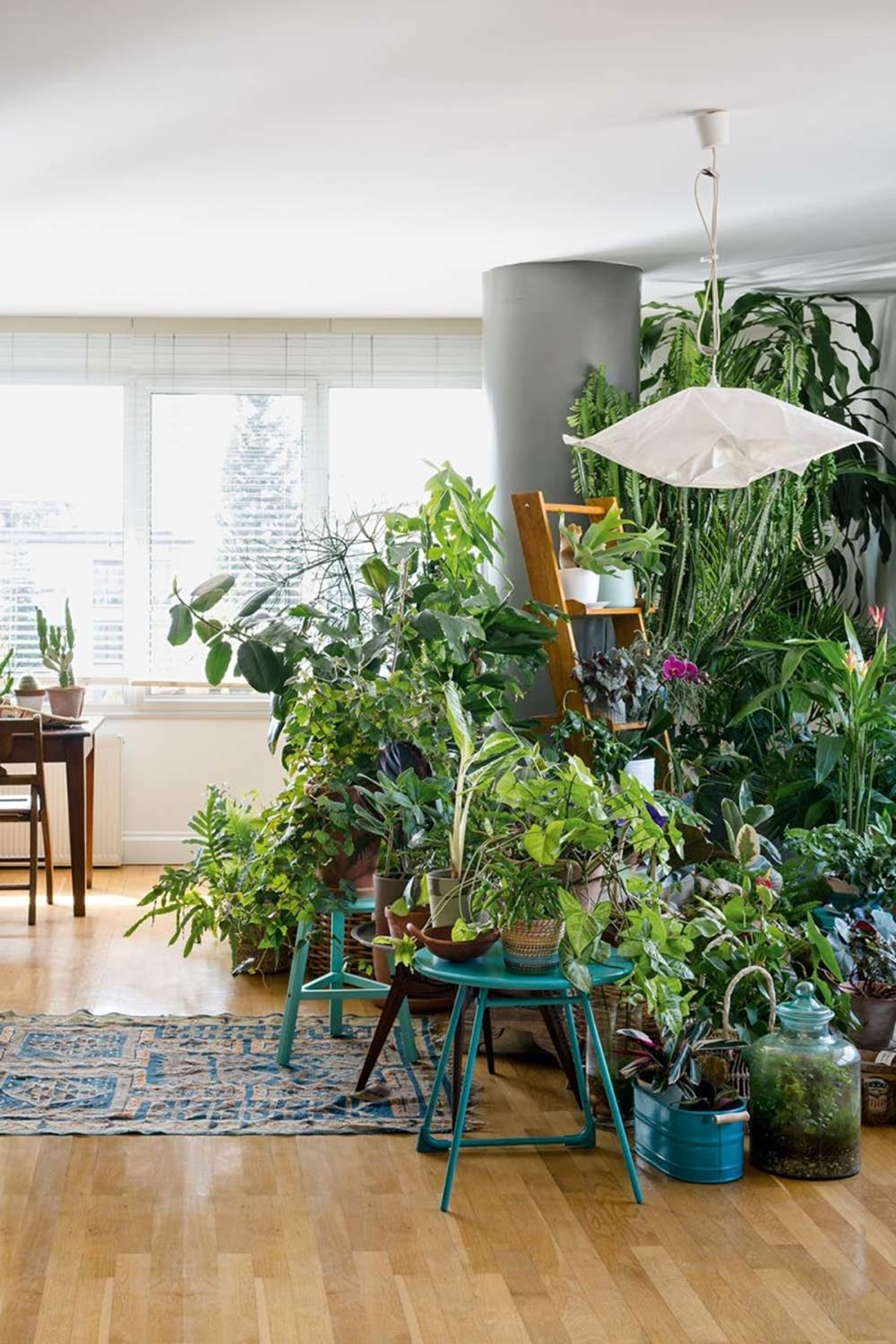 Urban Jungle Room Decor 34