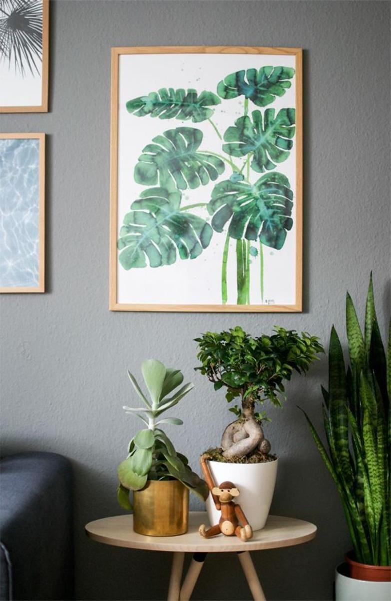 Urban Jungle Room Decor 5