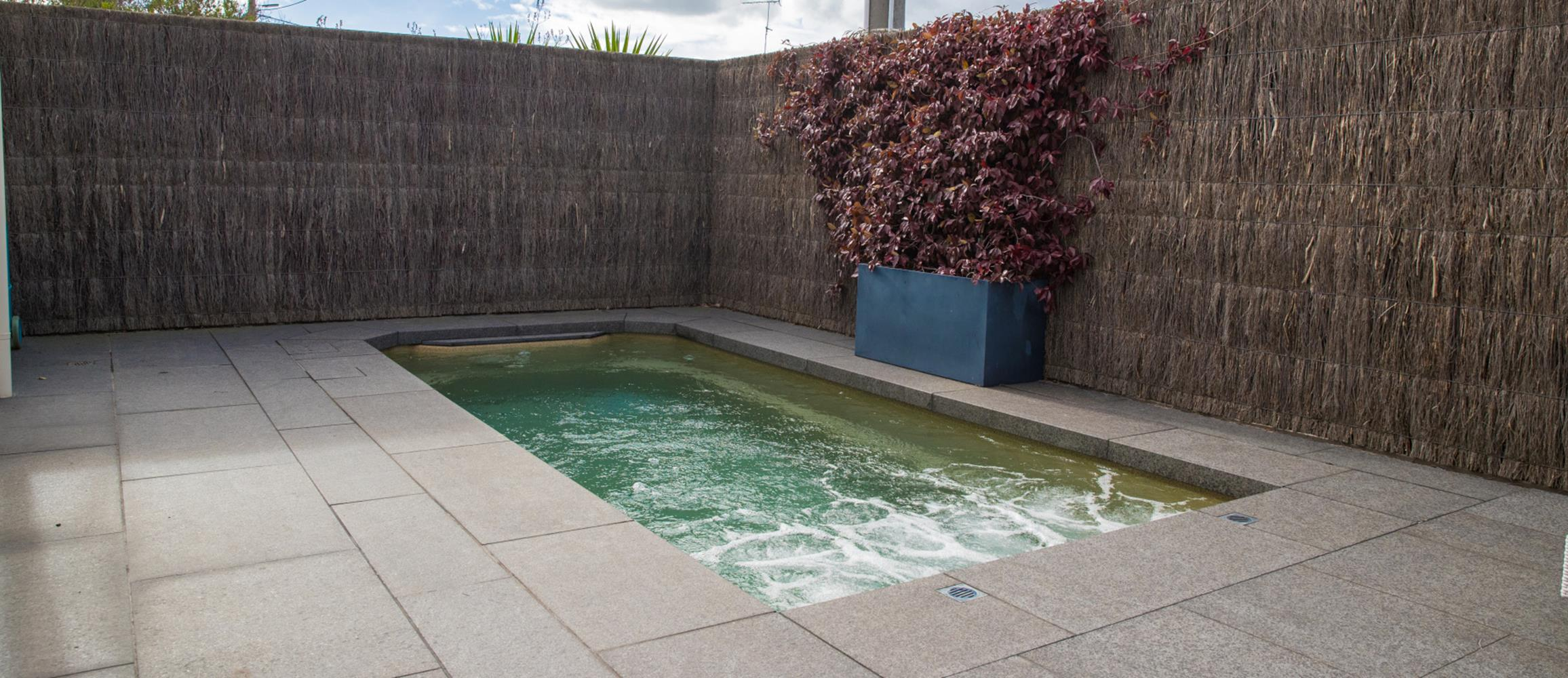 Affordable Small Backyard with Plunge Pool 10