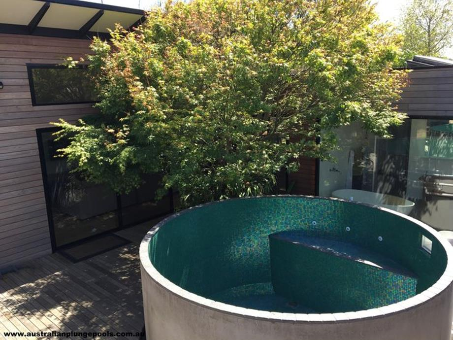 Affordable Small Backyard with Plunge Pool 2