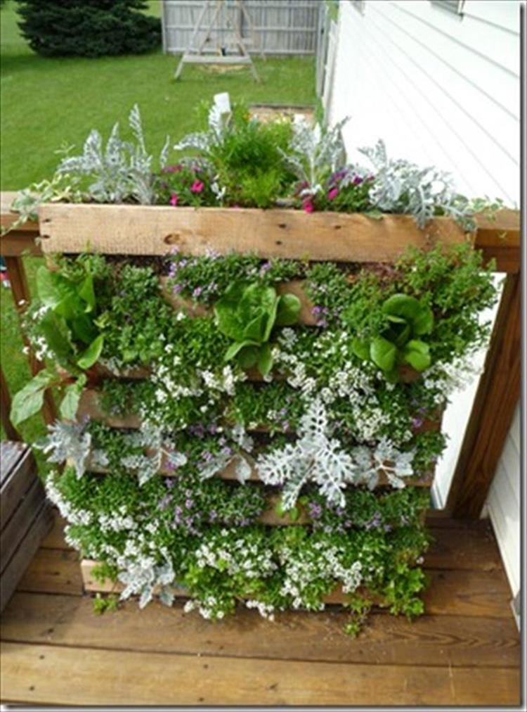 Upcycled Wood Pallet Gardens 2