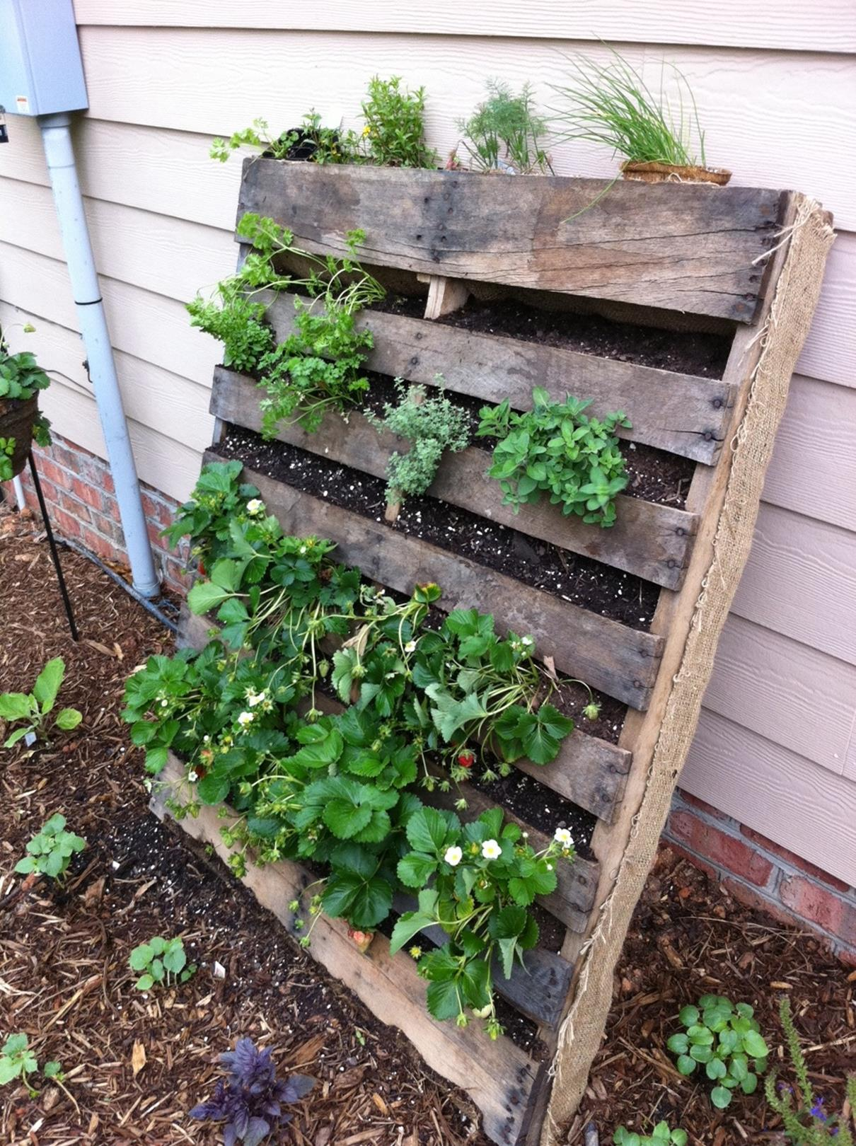 Upcycled Wood Pallet Gardens 8
