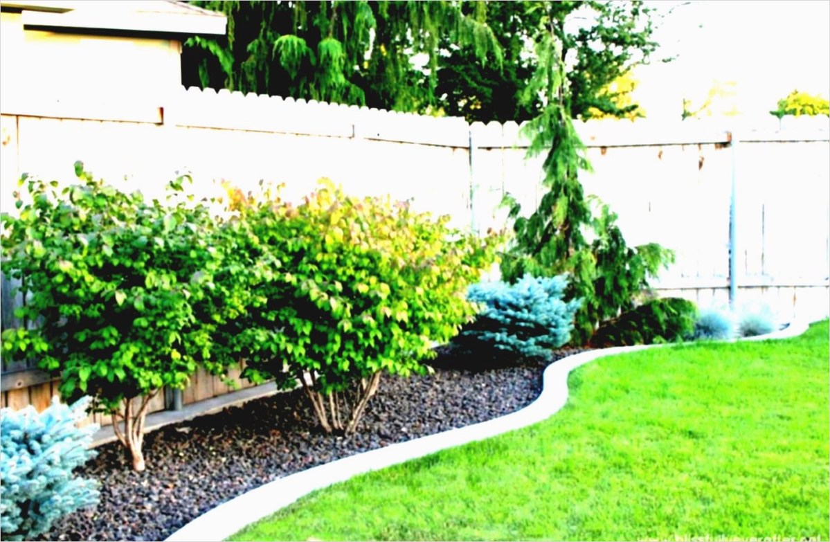 37 Diy Landscaping Ideas On A Budget 51