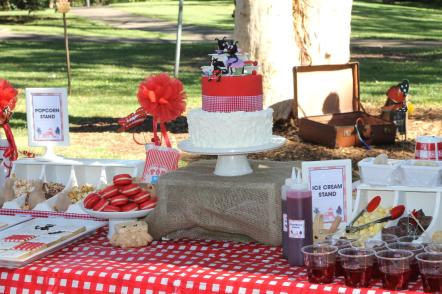 gingham-picnic-in-the-park