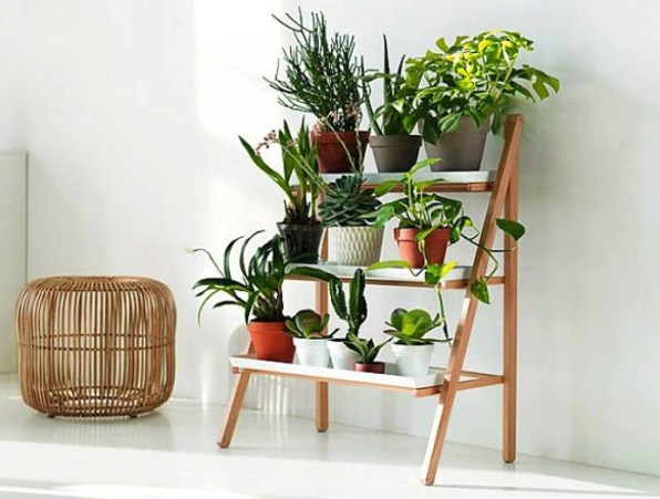 Multi-Level Plant Stands