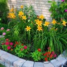 Amazing Garden Design Ideas For Small Space To Try 28