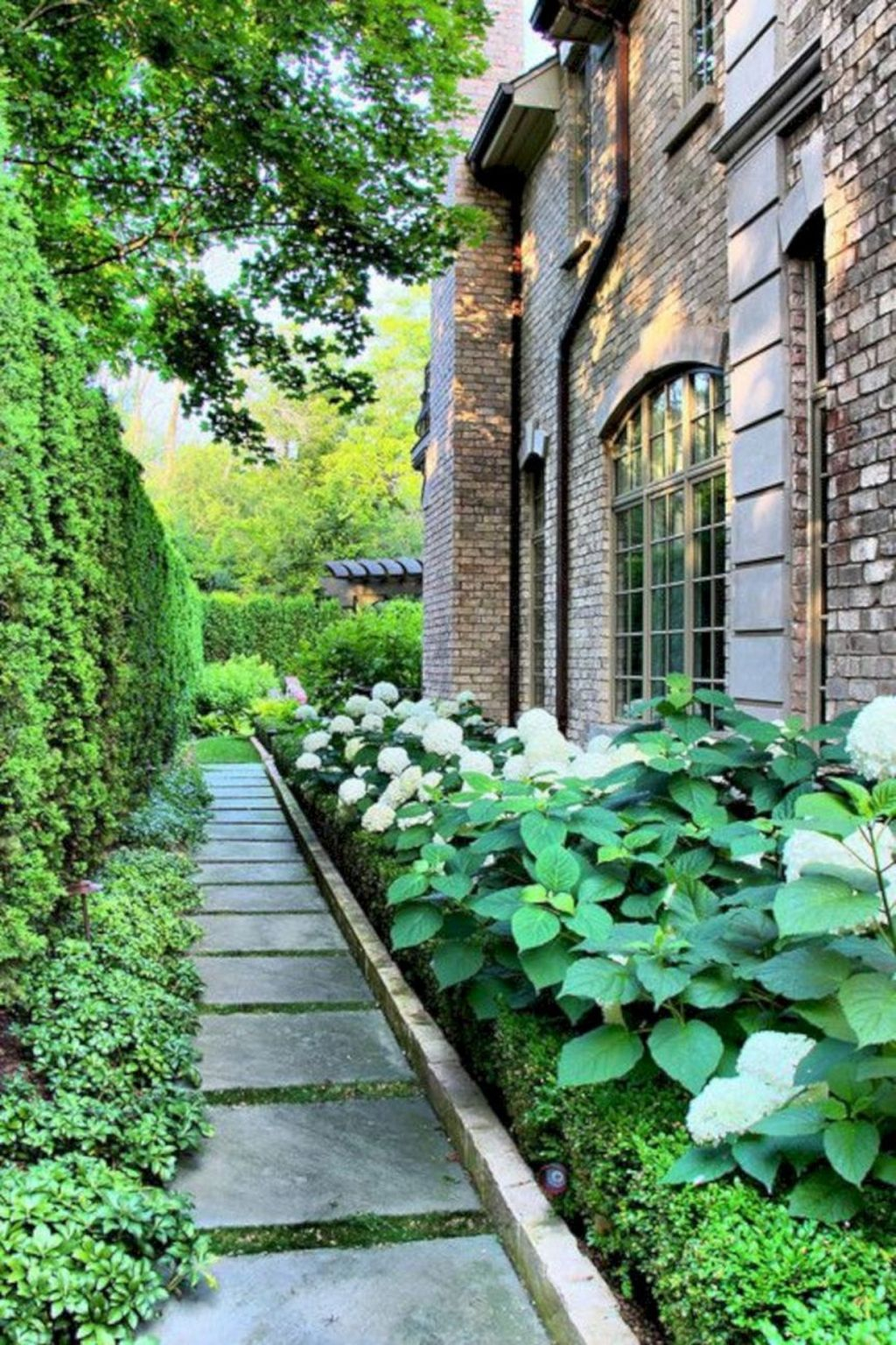Inspiring Hydrangeas Landscaping Design Ideas To Copy Right Now 14