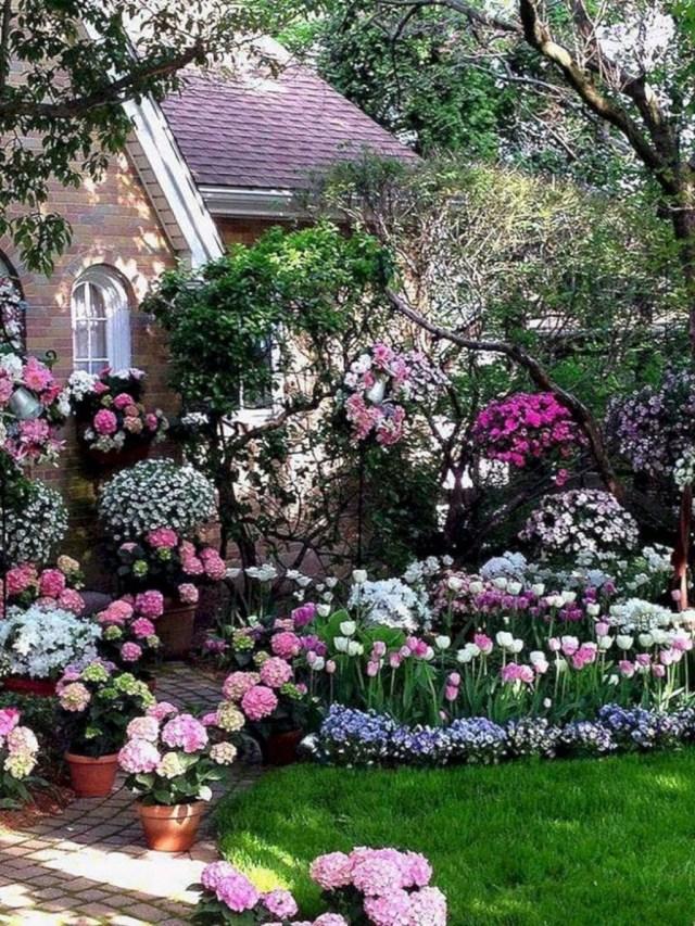 Inspiring Hydrangeas Landscaping Design Ideas To Copy Right Now 26