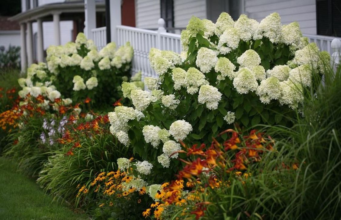 Inspiring Hydrangeas Landscaping Design Ideas To Copy Right Now 32