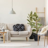 Smart Interior Design Ideas With Plants For Home 03