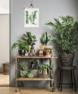 Smart Interior Design Ideas With Plants For Home 04