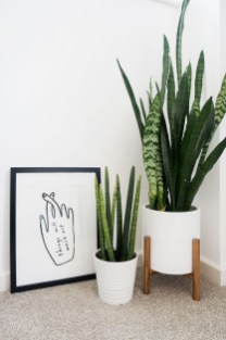 Smart Interior Design Ideas With Plants For Home 26