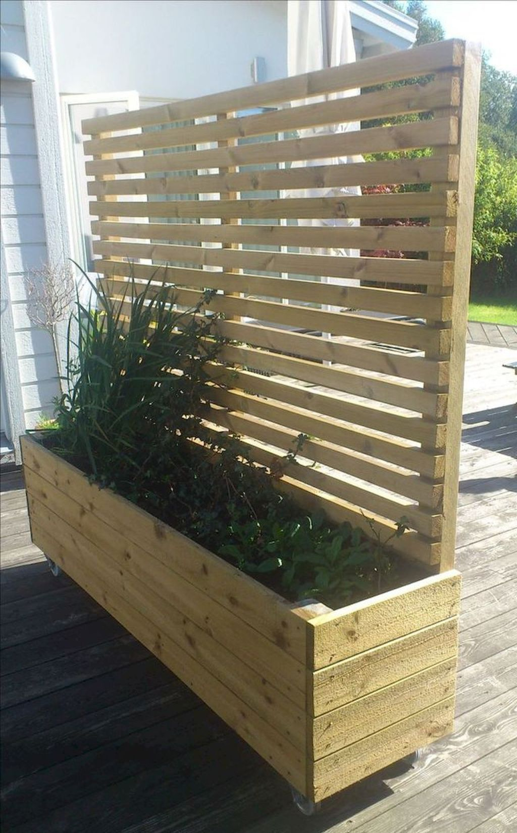 Captivating Diy Patio Gardens Ideas On A Budget To Try 18