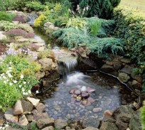 Creative Backyard Ponds Ideas With Waterfalls To Try 13