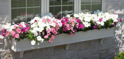 Fabulous Exterior Decoration Ideas With Flower In Window 10