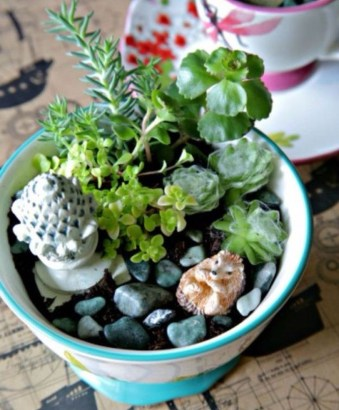 Inspiring Diy Teacup Mini Garden Ideas To Add Bliss To Your Home 05