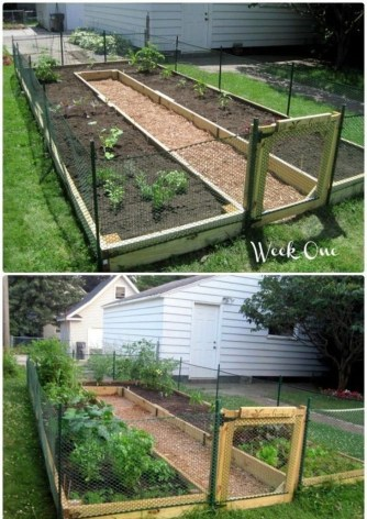 Lovely Vegetable Garden Decoration Ideas For You 05