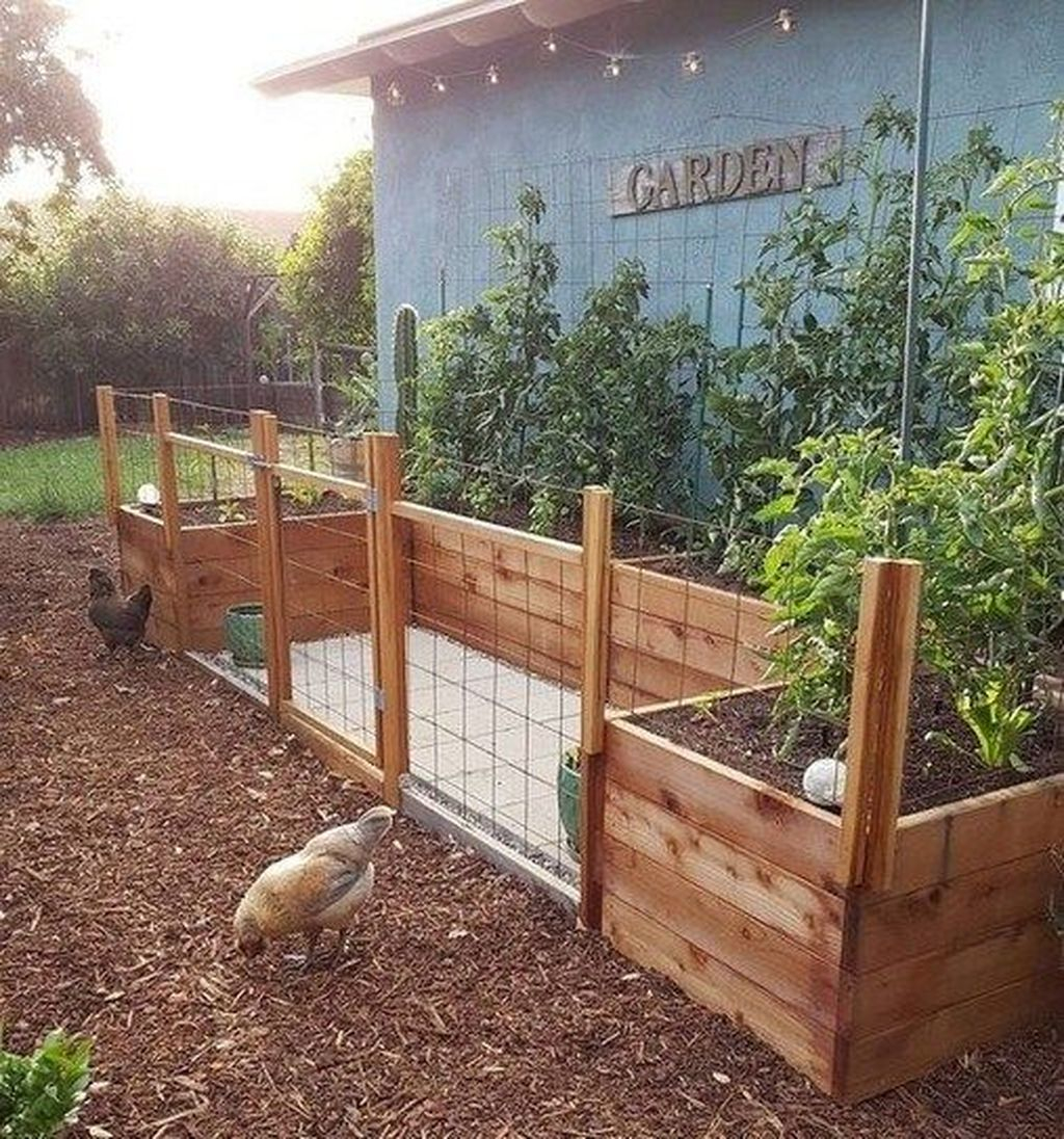 Lovely Vegetable Garden Decoration Ideas For You 12