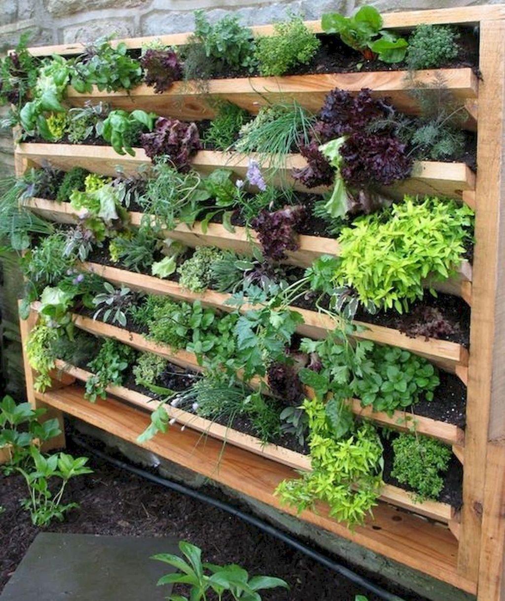 Lovely Vegetable Garden Decoration Ideas For You 13