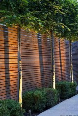 Charming Privacy Fence Design Ideas For You 12
