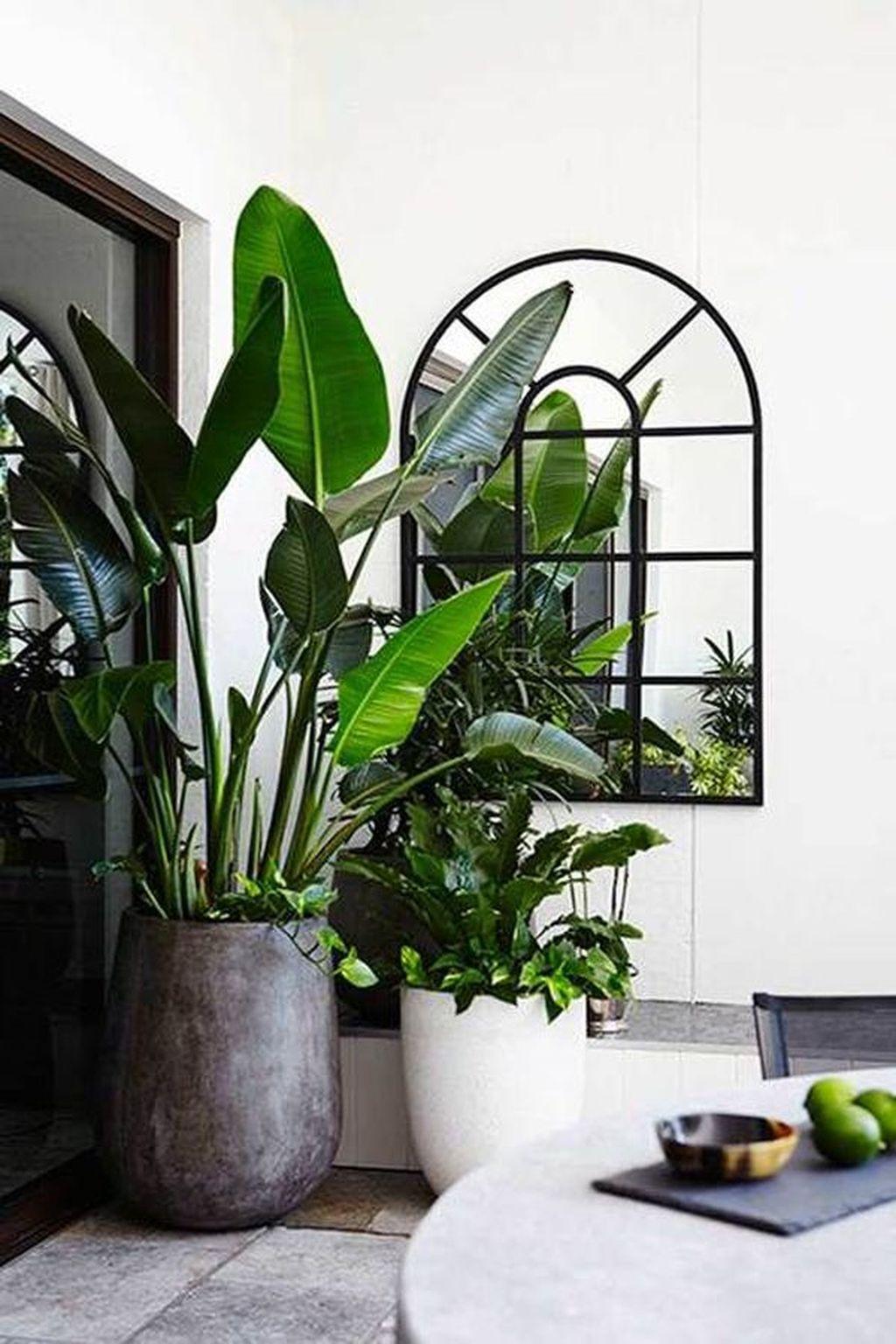 Splendid Tropical Leaf Decor Ideas For Home Design 30