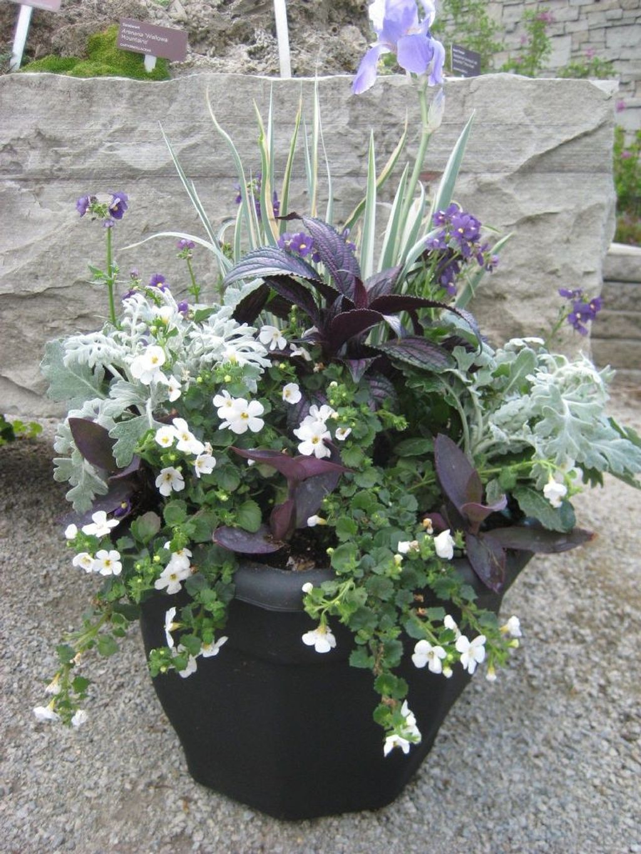 Chic Summer Planter Design Ideas For Summer Outdoor Pool 05