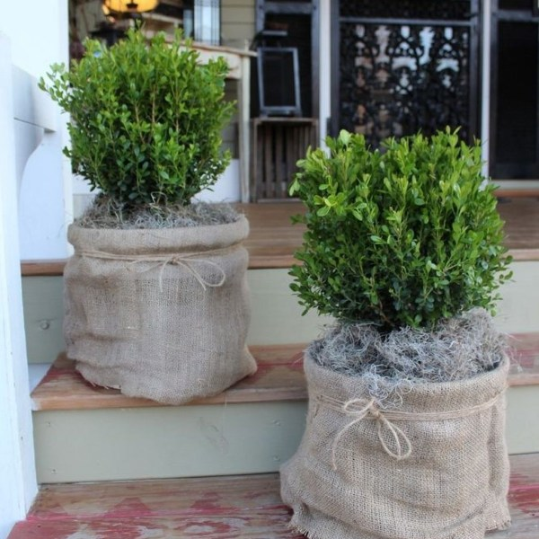Impressive Summer Planter Design Ideas For Front Yard Decoration 37