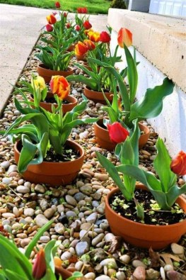 Unique Diy Flower Bed Ideas For Front Yard To Try 15