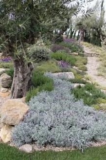 Awesome Mediterranean Garden Design Ideas For Your Backyard 02