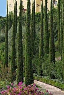 Awesome Mediterranean Garden Design Ideas For Your Backyard 21