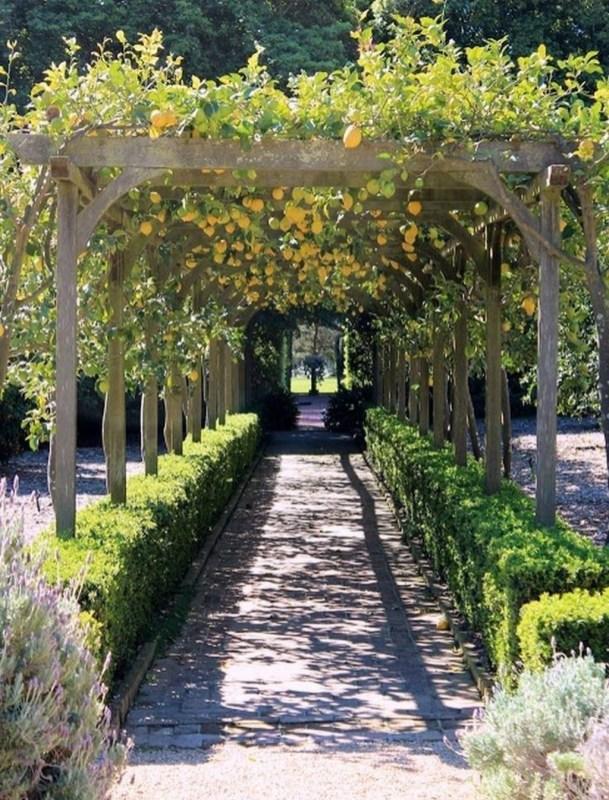 Awesome Mediterranean Garden Design Ideas For Your Backyard 31
