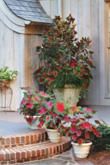 Dreamy Front Door Flower Pots Design Ideas To Increase Your Home Beauty 21