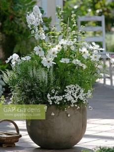 Elegant White Plants Garden Design Ideas For You 10