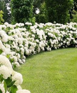 Elegant White Plants Garden Design Ideas For You 13
