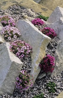Inspiring Rock Garden Ideas To Make Your Landscaping More Awesome 10
