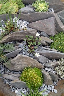 Inspiring Rock Garden Ideas To Make Your Landscaping More Awesome 11